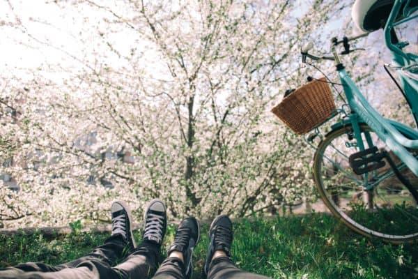 Frühling lässt unsere Gefühle auf Hochtouren laufen und bringt neuen Schwung!