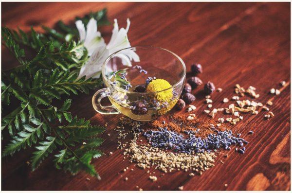Gesunder Tee mit verschiedenen Gewürzen und Kräutern