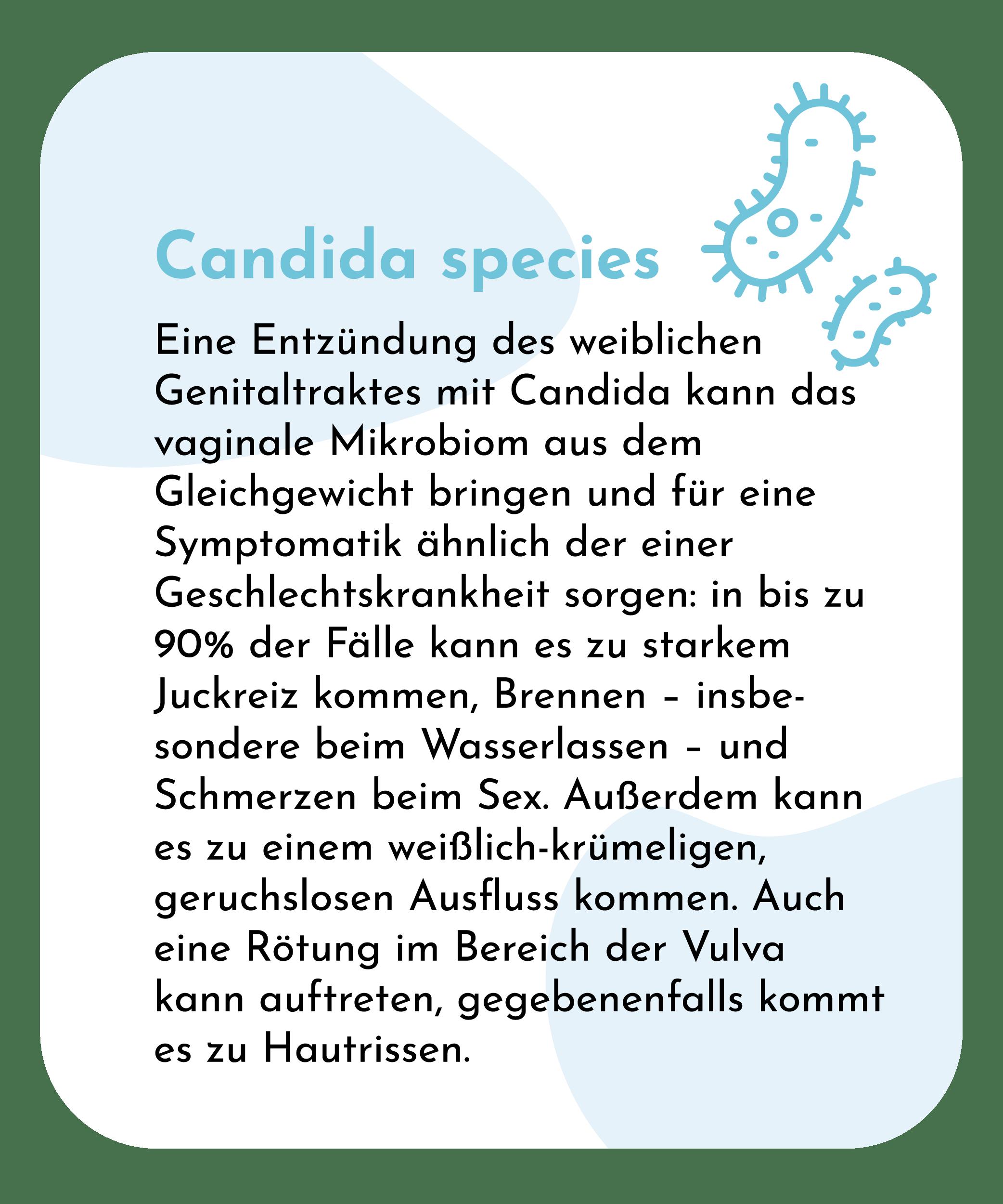 Candida species